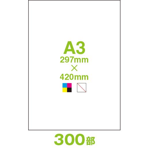CF40A3-00300