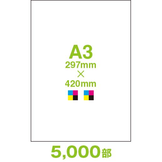 CF44A3-05000