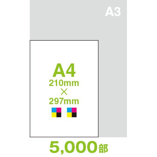 CF44A4-05000