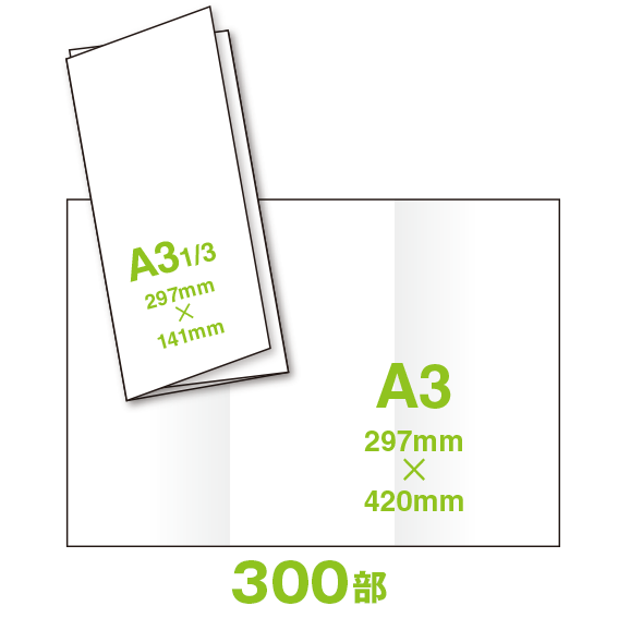 RM44A3-0300