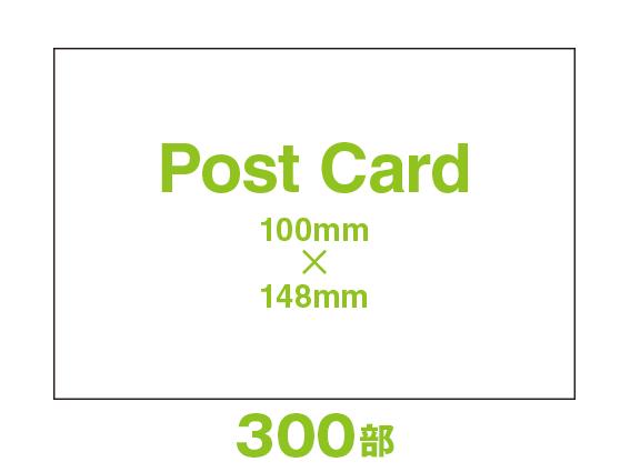 PD44-0300